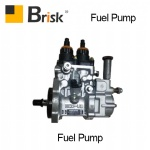 PC300 Fuel pump